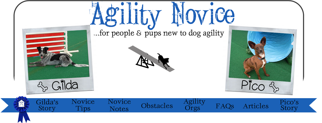 Agility Novice